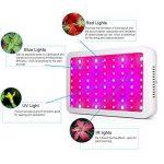 300W LED Lampe de Croissance Full Spectrum,Lampwin Lampe de Plante Intérieur UV IR LED avec 100 lampe LED pour Légumes,Fruit,Fleurs,etc de la marque Lampwin image 2 produit