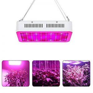 300W LED Lampe de Croissance Full Spectrum,Lampwin Lampe de Plante Intérieur UV IR LED avec 100 lampe LED pour Légumes,Fruit,Fleurs,etc de la marque Lampwin image 0 produit