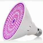 Amstt 290Plante LED Lumière Douille E27–8W Lampe de croissance horticole–Éclairage pour plantes de serre–Éclairage des plantes fleurs Lampe pour plantes d'intérieur, fleurs et légumes de la marque Amstt image 2 produit