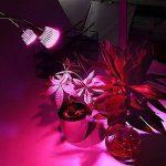 Asvert 10W LED Lampe de Croissance à Table 2 Têtes Flexibles avec Clip pour Plante Intérieur Eclairage Horticole Plein Spectre 6 Rouges 4 Bleu de la marque Asvert image 4 produit