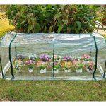 bâche transparente pour serre jardin TOP 4 image 1 produit
