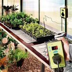 Bio Green HMTA 040-075 Sahara Tapis Chauffant 65 W de la marque Bio Green image 1 produit