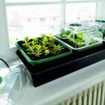Bio Green HOL 3 Hollandia Serre d'intérieur chauffée avec réservoir d'eau de la marque Bio Green image 1 produit