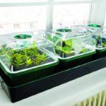 Bio Green HOL 3 Hollandia Serre d'intérieur chauffée avec réservoir d'eau de la marque Bio Green image 2 produit