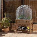 Catral Allemagne Ville de jardin, mature Tente 40, transparent, 80x 29x 4cm, 75050002 de la marque Catral Deutschland GmbH image 1 produit