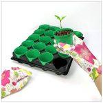 COM-FOUR® 40x pots de semences avec des pots de plantes pour la culture des plantes, boîte de plantes pour 40 plantes, 30,5 x 25,5 x 5,8 cm (40 pièces - pots de graines) de la marque com-four image 1 produit