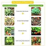 cultiver en serre de jardin TOP 10 image 3 produit