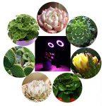 eclairage horticole TOP 9 image 3 produit