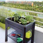 EDA Plastiques Espace potager Végétable Gris anthracite - 79 x 59 x 80 cm - 80 L de la marque EDA Plastiques image 1 produit