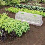 EDA Plastiques Serre de culture pour espace potager Végétable City de la marque EDA Plastiques image 1 produit