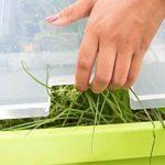 EDA Plastiques Serre de culture pour espace potager Végétable City de la marque EDA Plastiques image 3 produit