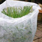 Elixir Voile d'hivernage pour protéger les cultures du vent/du froid/du gel 2m 2m x 10m blanc de la marque Elixir image 2 produit