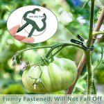 faire une serre pour tomates TOP 12 image 1 produit