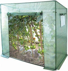fenêtre pour serre de jardin TOP 1 image 0 produit