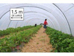 Film PEBD 200 microns - 1.50 de large (1m50) - Bache transparente petite serre de jardin de la marque Bâches Direct image 0 produit