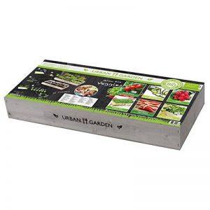 Florex Carré de Potager en Bois avec Mini serres de la marque Florex image 0 produit