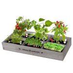 Florex Carré de Potager en Bois avec Mini serres de la marque Florex image 1 produit