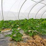 Foliarex UV2 Bâche en plastique pour serres Largeur 6 m de la marque Foliarex image 3 produit