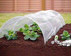 Garden Mile 1.5m M Polytunnel CLOCHE MINI Jardin Serre semence Propagateur Plante Bâche protection antigel 1.5m m x 45cm x 45cm de la marque garden mile image 0 produit