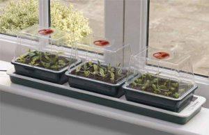 Garland Mini-serres propagateur avec chauffage électrique - Lot de 3 de la marque Garland image 0 produit