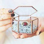 Gazechimp Maison Serre en Verre Vase Contenant Hexagonale pour Miniature Plante Succulente Fleur de la marque Gazechimp image 2 produit