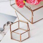 Gazechimp Maison Serre en Verre Vase Contenant Hexagonale pour Miniature Plante Succulente Fleur de la marque Gazechimp image 3 produit