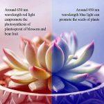 HUABEI Lampe de Plante LED Lampe de Croissance Bleu et Rouge for Fleurs Légumes Dimmable (12) de la marque HUABEI image 3 produit