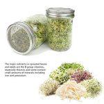 Iiniim Lot de 2Pot de germination Couvercle en acier inoxydable et bande pour Wide Mouth Mason Boule bocaux pour faire de la Bio Sprout Graines dans votre maison/cuisine de la marque iiniim image 1 produit