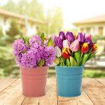 Jeteven 10 Pcs Mini Pot de Fleur en Fer Pot Plante Mural Seau Fleur Suspendu Déco Balcon Jardin 10 Couleurs Différentes 10cm de la marque image 4 produit