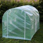 Kenley 3 x 2 m Jardin Serre Tunelle Polytunnel – Insectes Oiseaux Protection - Fort Acier Inoxydable 25 mm de la marque Kenley image 1 produit