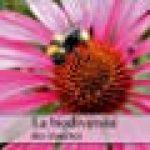 La Biodiversite Des Insectes 2018: Plan Serre D'insectes De La Photographe, Dagmar Laimgruber de la marque Dagmar Laimgruber image 3 produit
