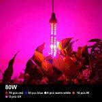 Lampe d'usine de la lampe E27 80W LED d'usine pour des plantes d'intérieur, des fleurs et des légumes 360 degrés d'éclairage de la marque Esbaybulbs image 4 produit