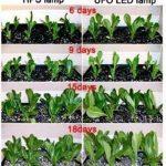 lampe de croissance pour semis TOP 2 image 4 produit