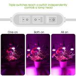 lampe de croissance TOP 12 image 2 produit