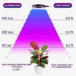 lampe horticole pour semis TOP 12 image 2 produit