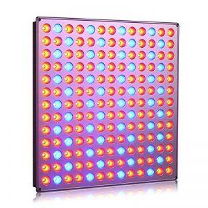lampe horticole TOP 2 image 0 produit