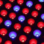 Lampe pour Plante 45W Toplanet Led Grow Light Rouge Bleu Interieur Grow Box Serre Cactus Orchidées VEG Croissance de la marque TOPLANET image 2 produit