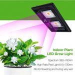 Lampes de Croissance - Grow Light LED Full Spectrum 200W tanche IP67 LED Plantes Grow Lampe Serre Grow Box Légume Fleur Croissance[Classe énergétique A+++] de la marque CF Grow image 1 produit