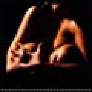LES COULEURS des COURBES NUES 2019: Photos erotiques en plan serre, aux couleurs chaudes et saturees. de la marque Alain Baron image 0 produit