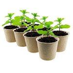 LFS Biodégradable sans Tourbe Fibre Pots pour Jeunes Plants 6cm Ronde 100Pcs Gratuit avec étiquettes de la marque LFS image 2 produit