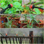 légumes serre de jardin TOP 12 image 2 produit