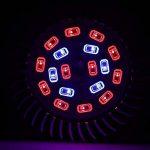 Luniquz 18LEDs Lampe de Plante Intérieur 8W E14 Ampoule de Croissance pour Végétation Hydroponique ou en Serre(12 Rouges et 6 Bleux) de la marque Luniquz image 4 produit