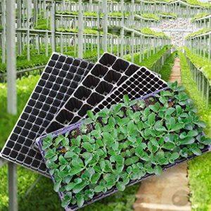 Lunji 3 semis Durable kit de germination 53x29cm - (50 trous) de la marque Lunji image 0 produit
