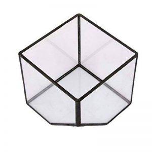 MagiDeal Cube de Verre Vase Décoration pour Maison Jardin Serre Taille S de la marque MagiDeal image 0 produit