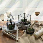MagiDeal Cube de Verre Vase Décoration pour Maison Jardin Serre Taille S de la marque MagiDeal image 2 produit