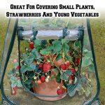 Mini Pop - up Serre Clair fleur Maison Pot de Fleurs Couvrir le jardinage les plantes tente Jardin Fleur le logement 70*70*80cm de la marque MINILOP image 3 produit
