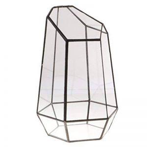 mini serre de jardin en verre TOP 9 image 0 produit