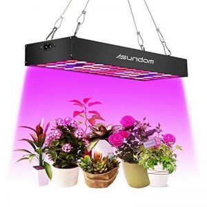 mini serre plante TOP 12 image 0 produit