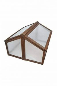 mini serre polycarbonate TOP 10 image 0 produit