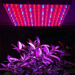 Mvpower 225 LED Lampe de Croissance 15W Lampe de Floraison Lumiere Rouge Bleu(165 Rouge+ 60 Bleu LED) Elcairage pour Culture Plantes de la marque Mvpower image 0 produit